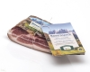 South Tyrolean Farm Bacon Bauernspeck Steiner approx. 500 gr.