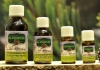 Mountain Pine Oil 10 ml. - Eschgfeller