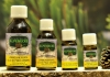 Swiss Pine Oil 20 ml. - Eschgfeller